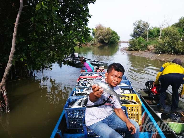Hasil panen pembudidaya ikan desa Kalirejo Kangkung diangkut lewat jalur sungai